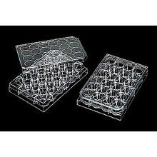 Microplate, Large, pack/10, Large (24-well plate)