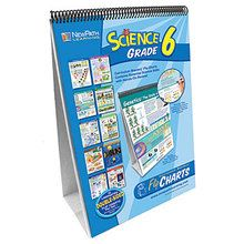Curriculum Mastery Science Flip Chart Set - Grade 6
