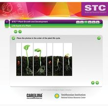 STC™ Plant Growth and Development Interactive Whiteboard Activity