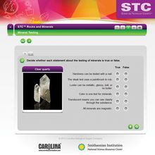 STC™ Rocks and Minerals Interactive Whiteboard Activity