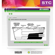 STC™ Land and Water Interactive Whiteboard Activity