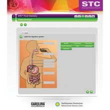 STC™ Food Chemistry Interactive Whiteboard Activity