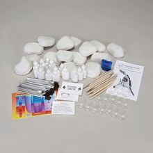 Real Fossil Identification Lab Kit