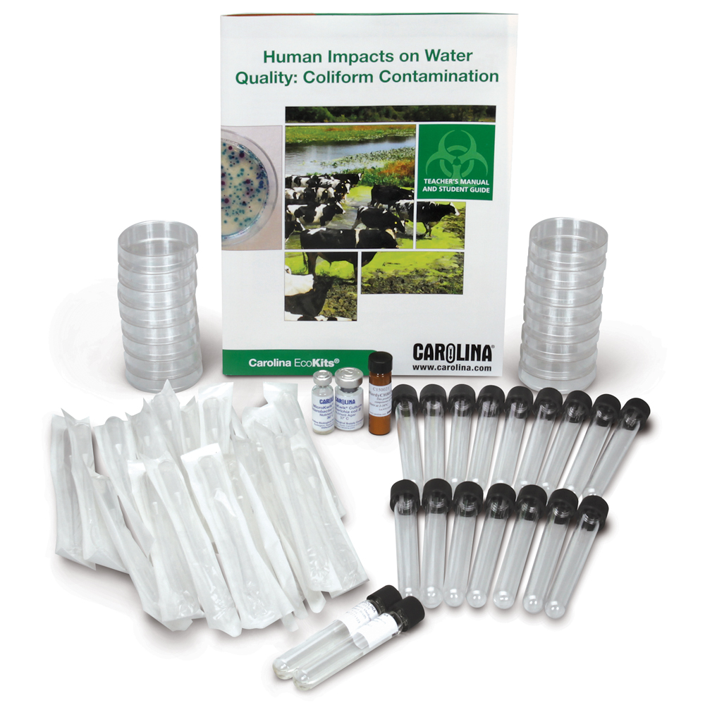 Use sterile technique to identify and differentiate Escherichia coli from other coliforms with the Carolina EcoKits®: Coliform Contamination kit.
