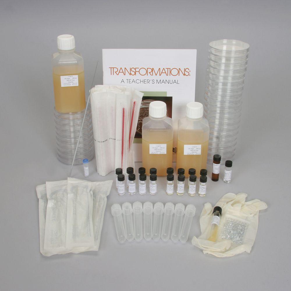 pBLU® Colony Transformation 4-Station Kit (with perishables)