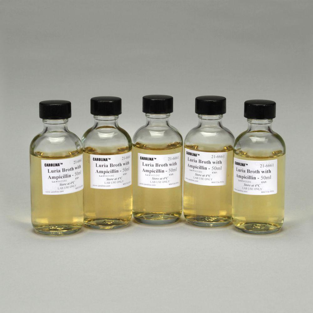 order pyridium medication