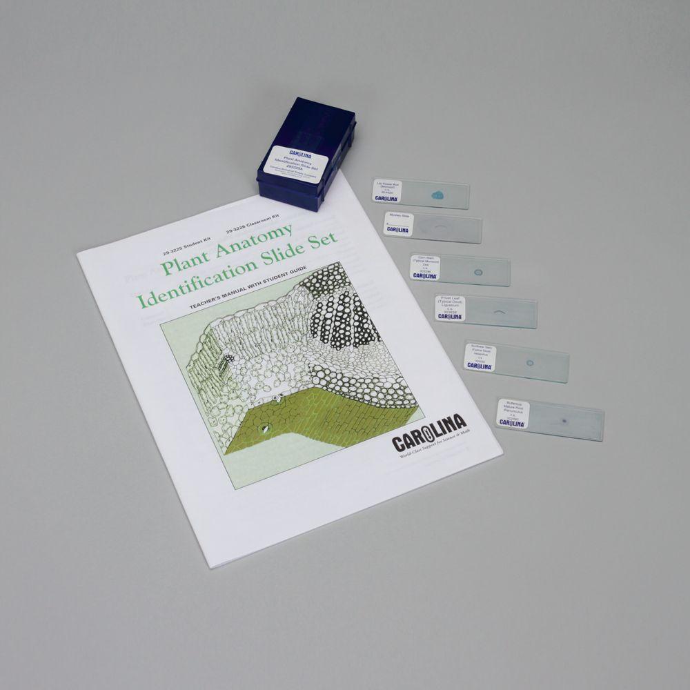 Plant Anatomy Identification Microscope Slide Sets Carolina
