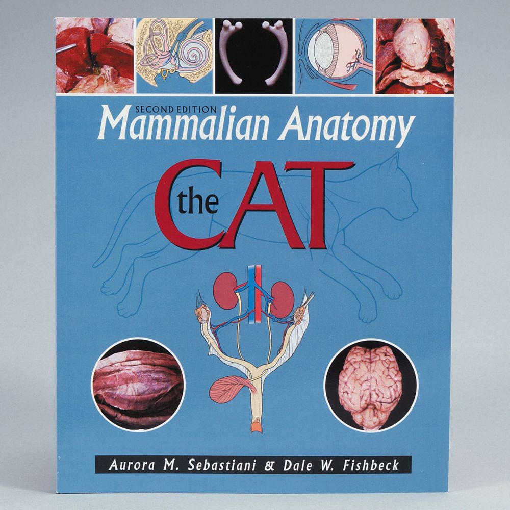 Mammalian Anatomy: The Cat Manual | Carolina.com