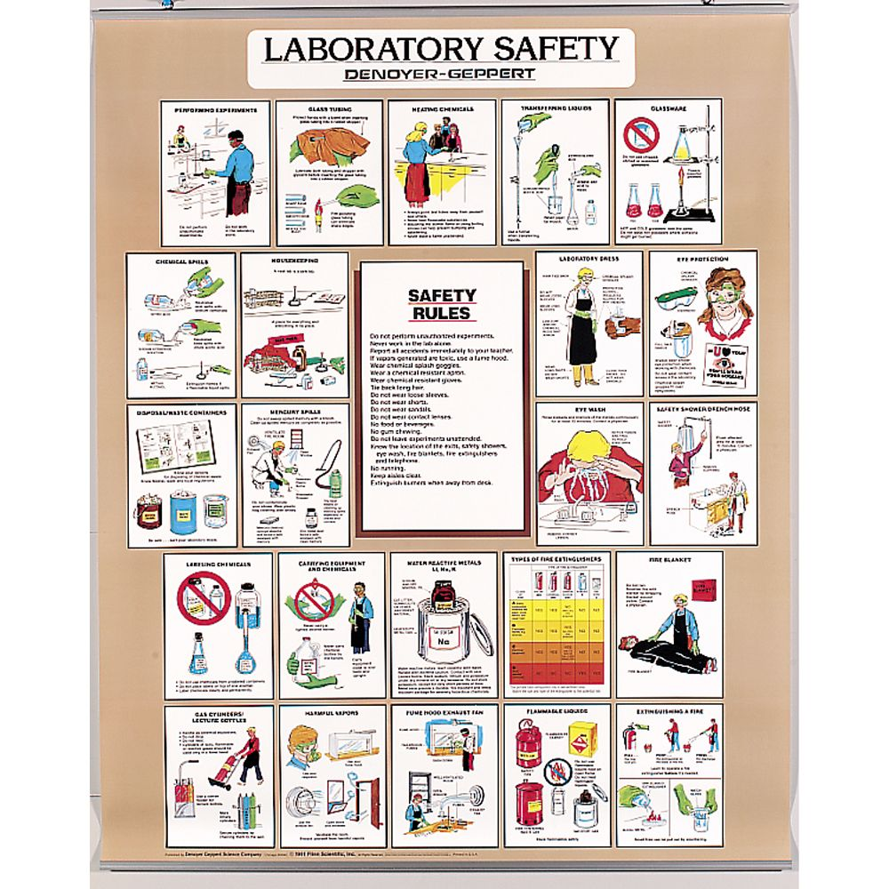 safety measures in labs Chemical and laboratory safety policies & procedures developed, revised, and adopted by the chemistry department faculty developed & adopted 27.