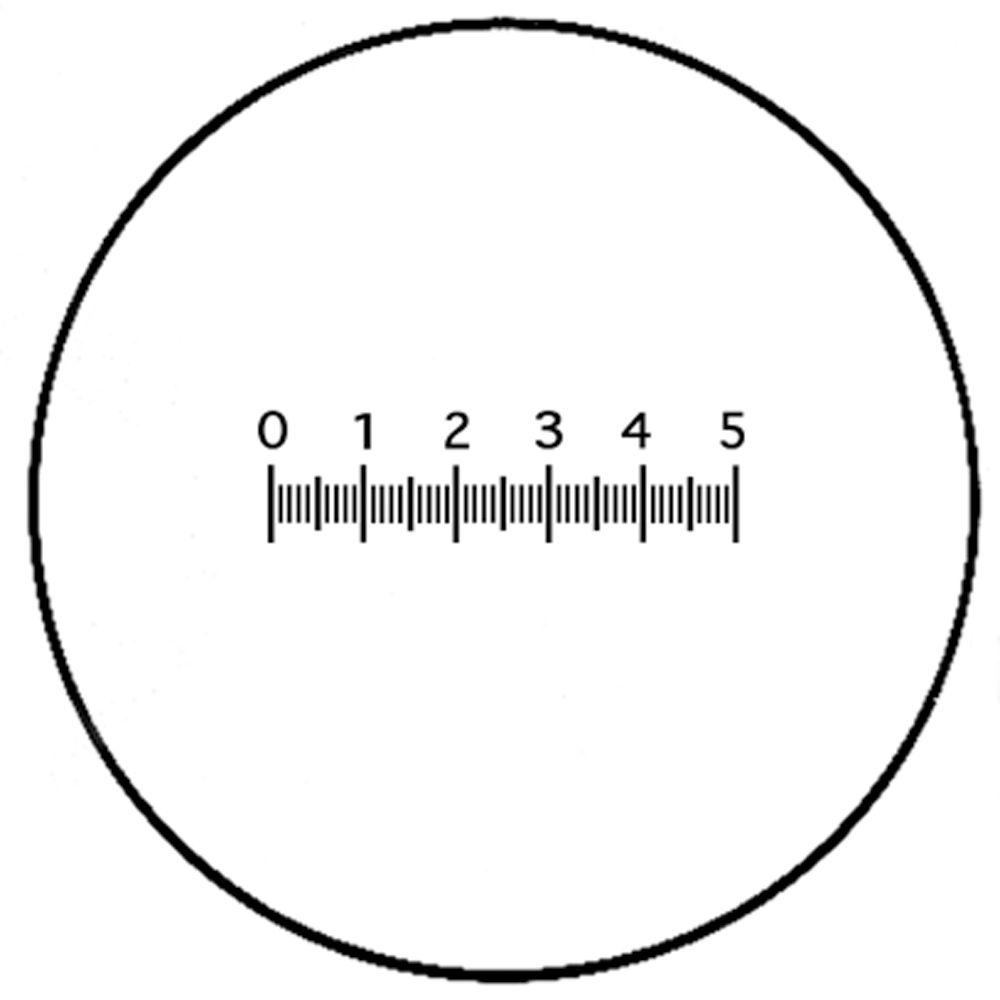 wolfe u00ae micrometer disc 10