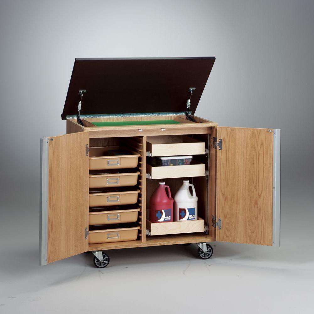 Write-n-Roll Mobile Storage Unit | Carolina.com