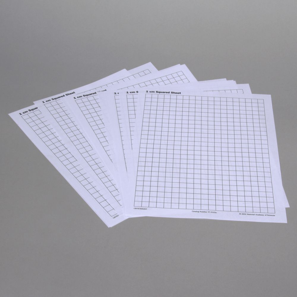 paper  graph  centimeter grid  pack of 20