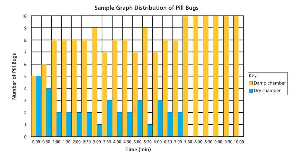 Pill Bug Behavior Choices Carolina