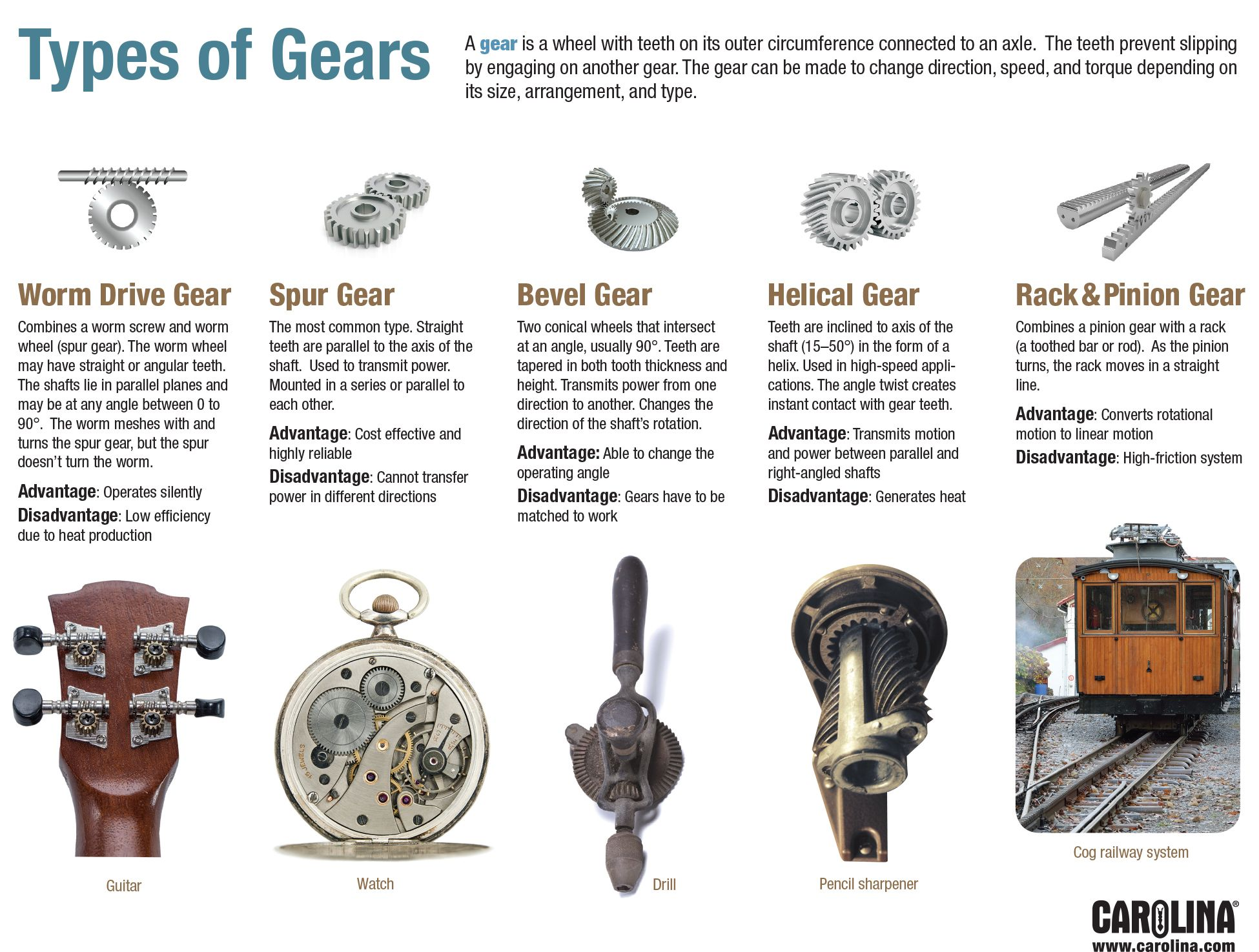 Infographic: Types Of Gears
