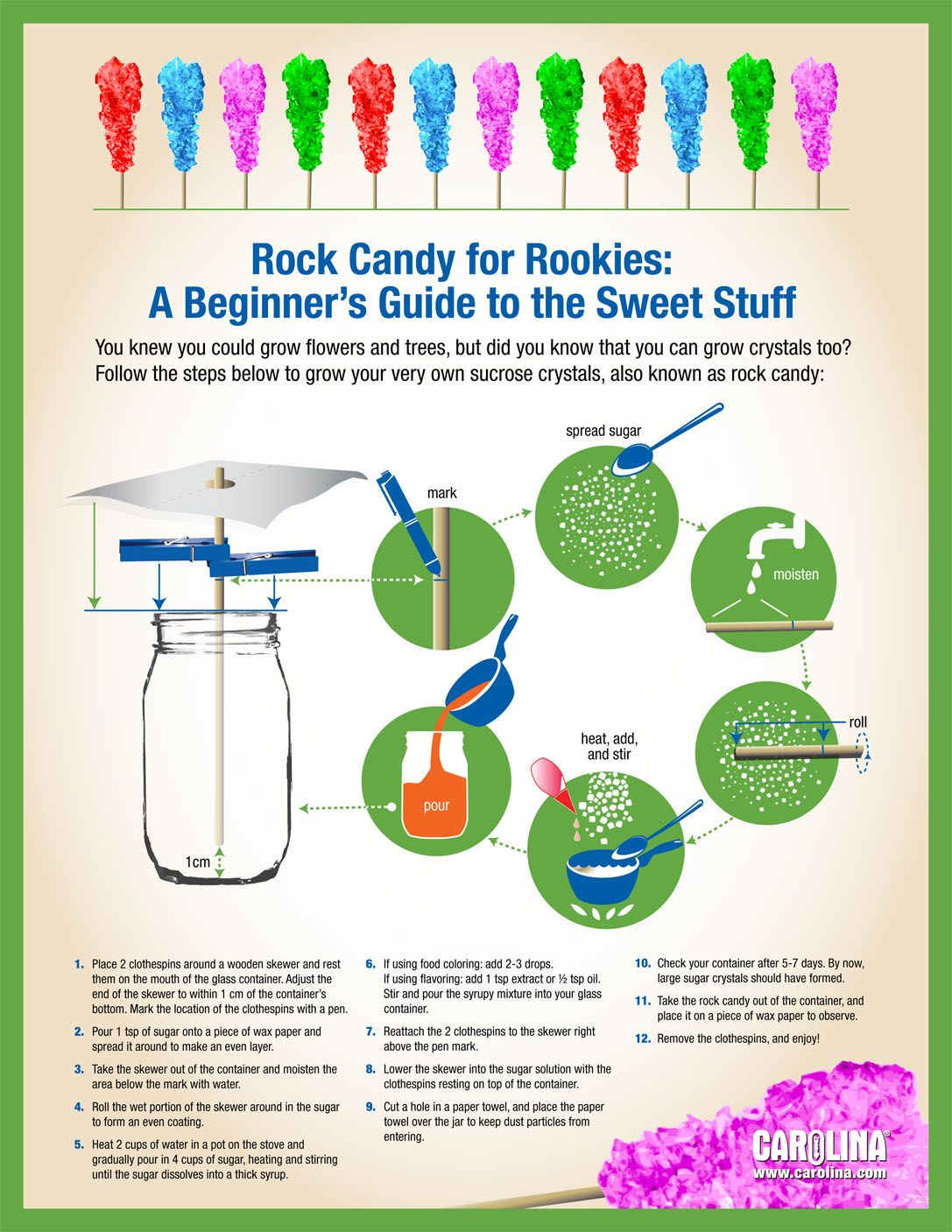 Infographic - Rock Candy for Rookies: A Beginner's Guide to the Sweet Stuff