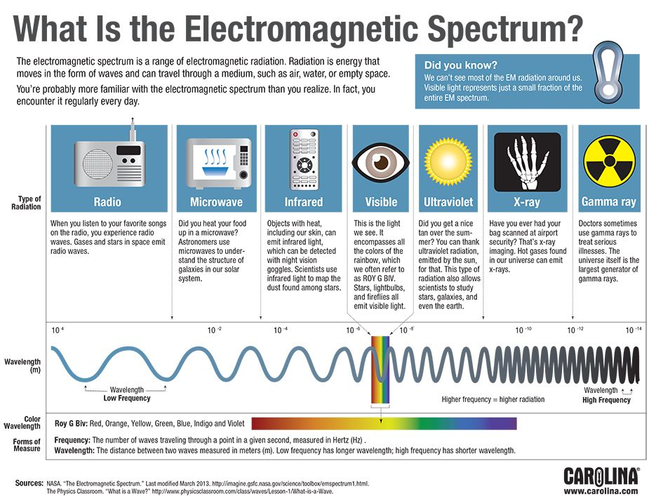 Infographic What Is The Electromagnetic Spectrum Carolina