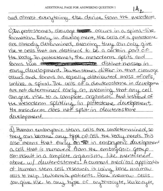 Disadvantages of smoking essay spm