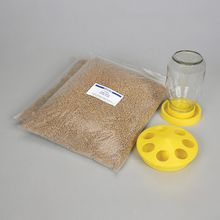 Quail Feeding Set