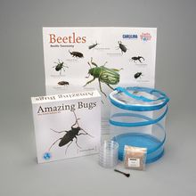 Beetle Races Amazing Bugs® Kit (with prepaid coupon)