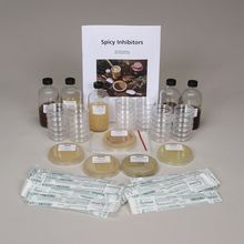 Spicy Inhibitors Kit (with perishables)