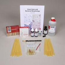 Gram Stain and Bacterial Morphology Kit (with perishables)