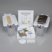 Exploring Variation with Wisconsin Fast Plants® Kit
