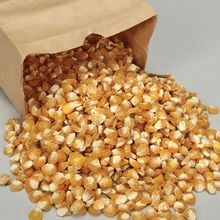 Corn, Sweet, Viable Seed, 1 lb