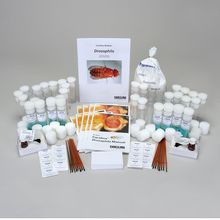 Carolina BioKits®: Drosophila 8-Station Kit (with prepaid coupon)