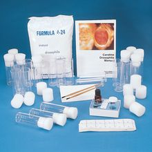 Drosophila Culture Kit