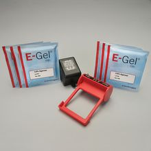 E-Gel Starter Kit with 2% Gels with SYBR Safe
