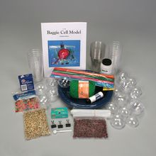 DNALC Baggie Cell Model Kit