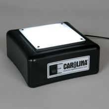 Carolina™ LED Light Box