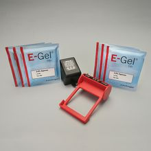 E-Gel® Starter Kit with 0.8% Gels with Ethidium Bromide