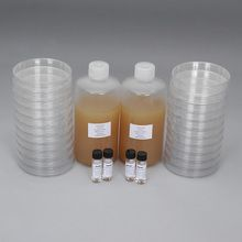 Luria Broth Agar + Ampicillin + Kanamycin Ready-to-Pour Media Set