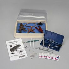 Introduction to Animal Dissection Kit