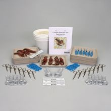 Crayfish Structure and Function Kit