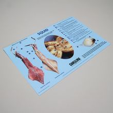 Carolina™ Squid Dissection Mat