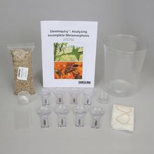 ElemInquiry™: Analyzing Incomplete Metamorphosis Kit (with Perishables)