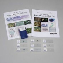 Plant Diversity Microscope Slide Student Set for AP® Biology