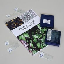 Bacteria, Fungi, and Plants Illustrated Manual and Slide Set