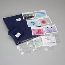 Discovering Botany Self-Study Unit, Microscope Slide Set