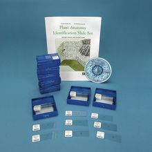Plant Anatomy Identification Classroom Set with CD-ROM