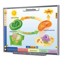 Multimedia Science Lessons for Interactive Whiteboards: Photosynthesis and Respiration