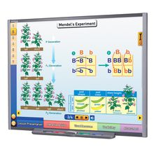 Multimedia Science Lessons for Interactive Whiteboards: Genetics, the Study of Heredity