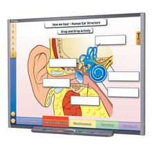 Physical Science Multimedia Lessons for Interactive Whiteboards: Sound, Single User