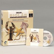 Carolina™ Bio Lab®: Invertebrates CD-ROM, Lab Pack (10)