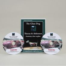 The Glass Dog: Thorax and Abdomen CD-ROM