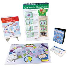 Mitosis Curriculum Learning Module