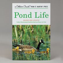 Pond Life, Golden Guide Book