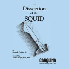 Dissection and Anatomy of the Squid Guide